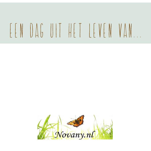 Een dag uit het leven van…Novany!