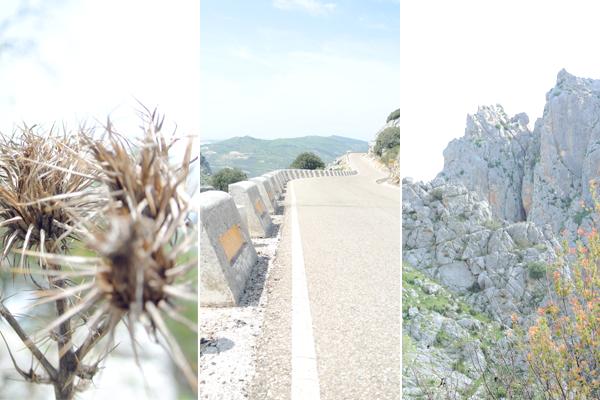 Casa Olea, B&B, logeren in de natuur, Andalusië, Spanje, ecotoerisme, I love ecoblog