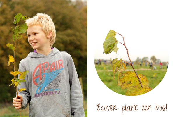 I love eco blog, Ecover, bos, bos planten