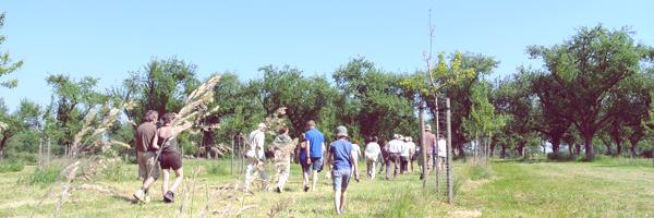 Pajottenlander, natuurlijke sappen, opentuinendag, I love eco blog, biobuffet