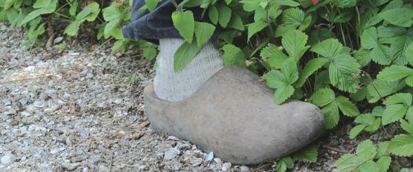 i love eco blog, weleda, natuurcosmetica, natuurlijk, gezond, tuin, weleda tuin, tuinman weleda, jan graafland