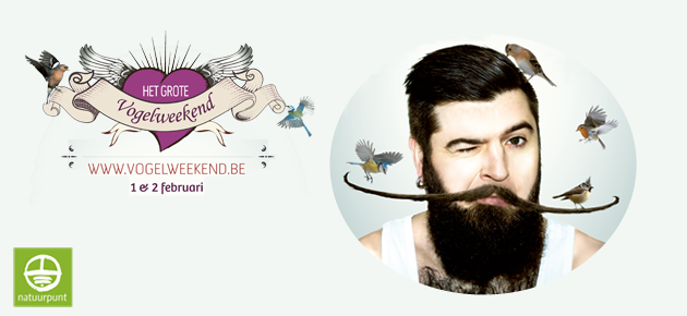 Het Grote Vogelweekend 2014