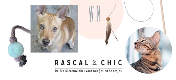 I love eco blog, win, eco dierenwinkel, rascal and chic