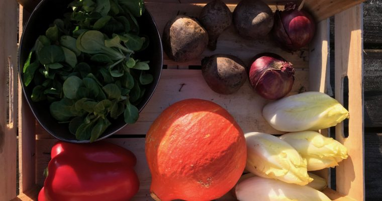 Wat maak je met een groentepakket? #1