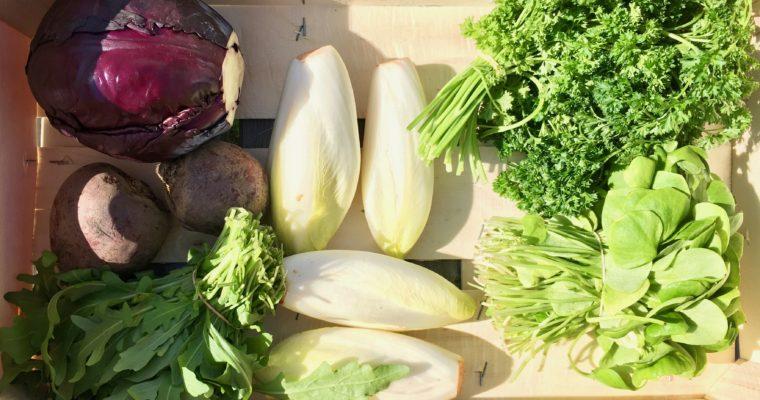 Wat maak je met een groentepakket? #6