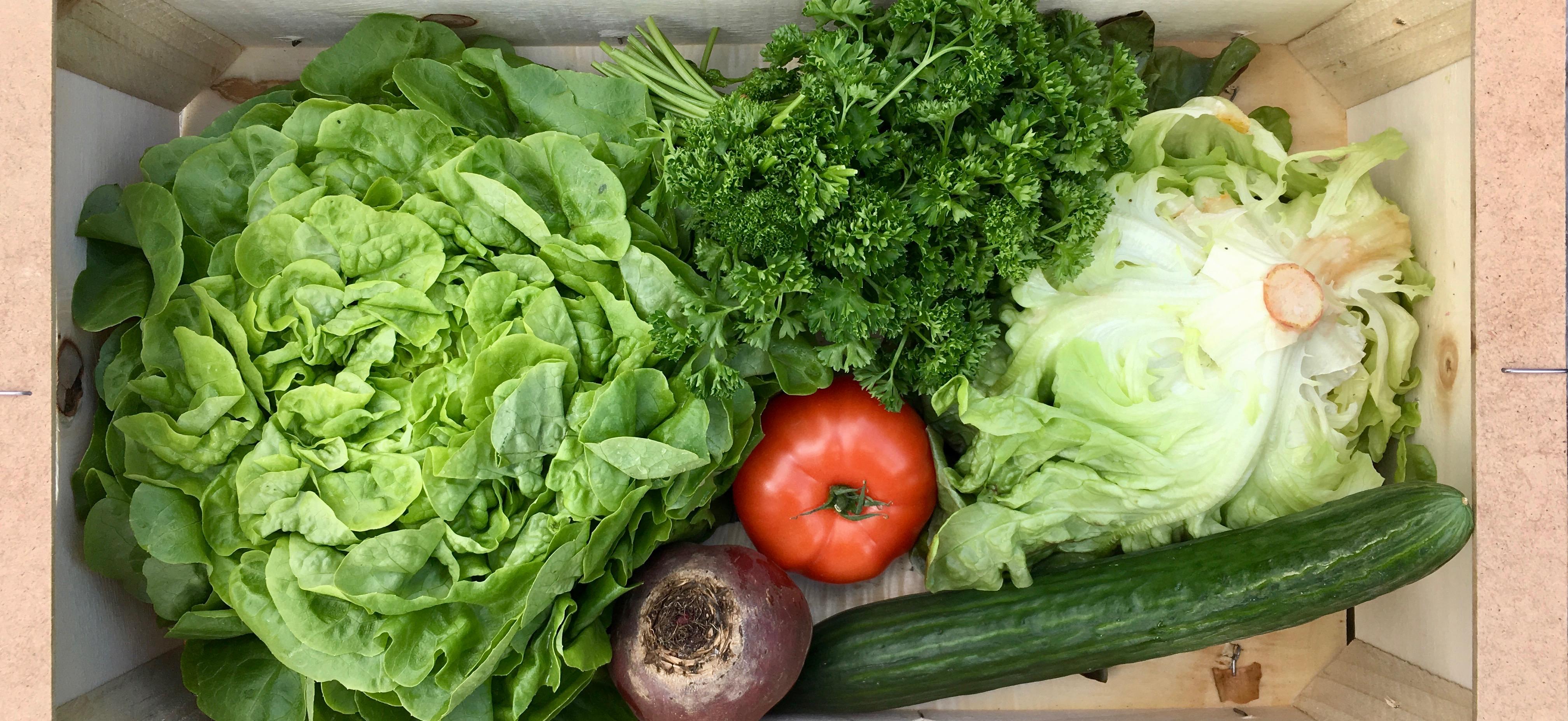 Wat maak je met een groentepakket? #10