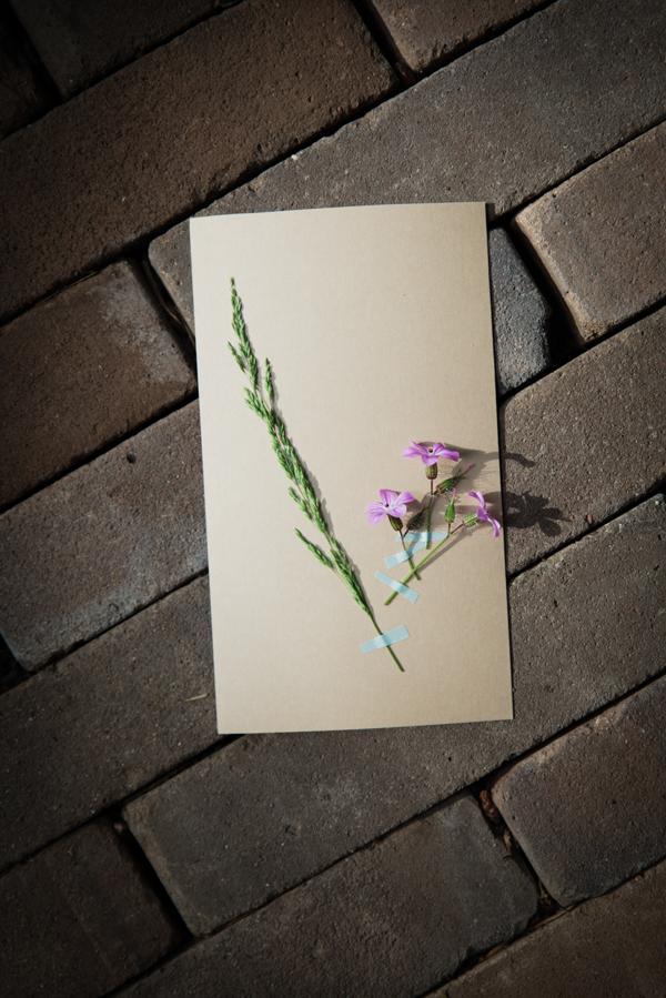 I love eco blog, bos, natuur, natuurkaartje, bladwijzer, zelf maken, natuurknutselen