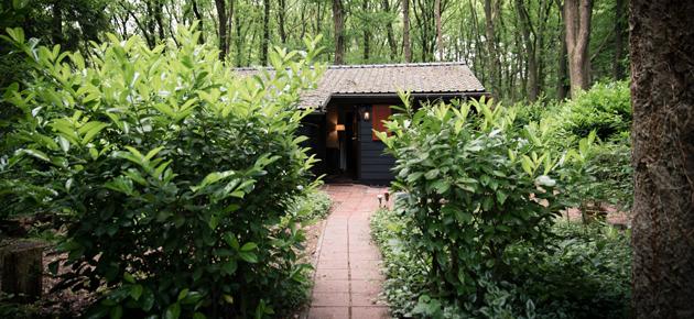 Weekendje weg in een boshuisje