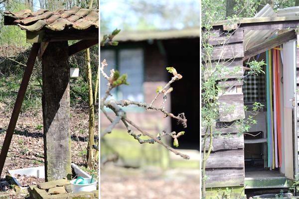 natuur, lente, wandelen, ontdekken, genieten, natuurwandeling