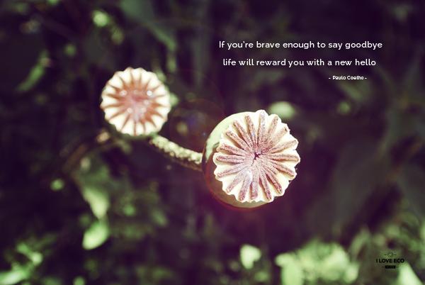 I love eco blog, free wallpaper, gratis bureaubladafbeelding,