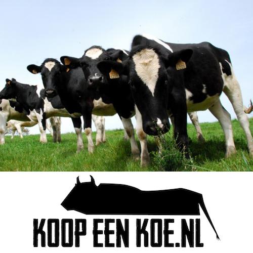 Koop en deel een koe, moeh!