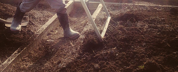 Moestuin werken met de grelinette. Moestuinieren voor beginners.
