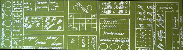 Moestuin voor beginners. Leer moestuinieren met 7 makkelijke tips