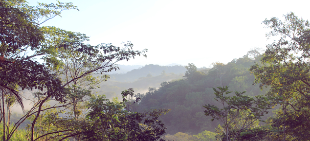I ♥ Ecotripping: Costa Rica, part 1