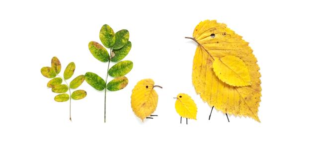 5 knutseltips voor tijdens de herfstvakantie