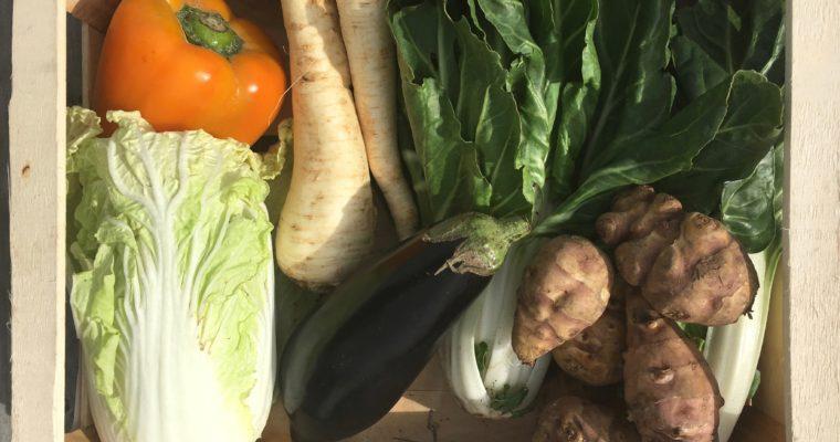 Wat maak je met een groentepakket? #3