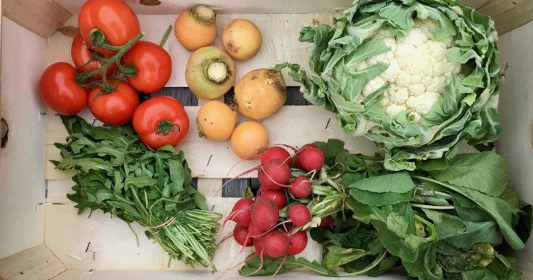 Wat maak je met een groentepakket? #9