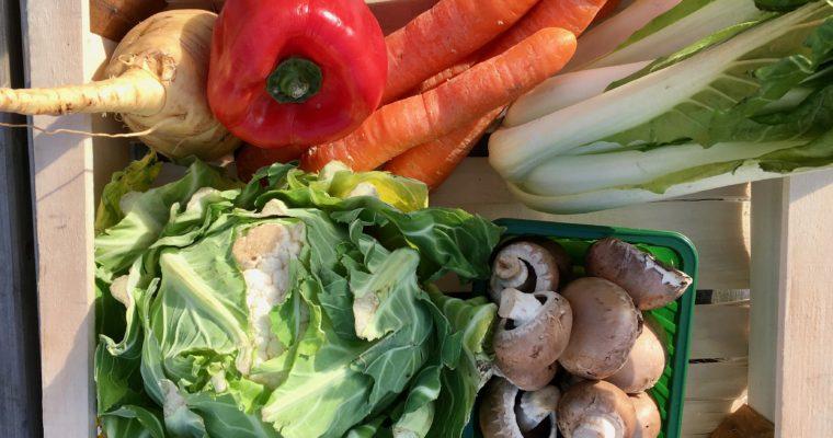 Wat maak je met een groentepakket? #5
