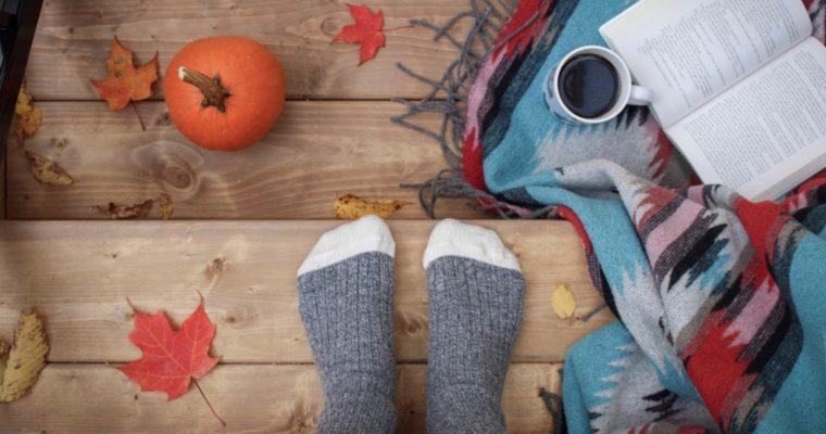 Pompoenen: het toppunt van herfst