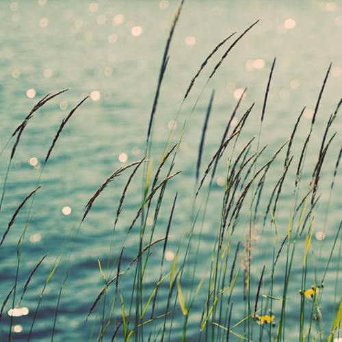 Morgen is het zomer!